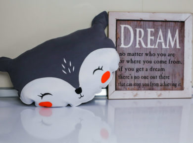 Hand Made pillow with a dream poster